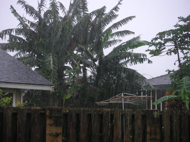 Kauaiday41